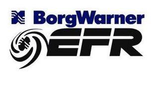 Borg Warner EFR