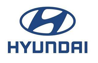 Hyundai Deatschwerks Fuel Injectors