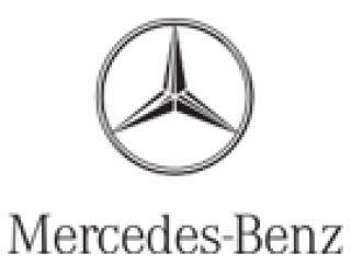 Mercedes-Benz Deatschwerks Fuel Injectors